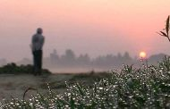 হিম কুয়াশার চাদর নিয়ে হেমন্তকাল আসে___কামরুল আলম